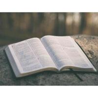 Bøker og fagstoff